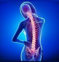 Spondyloarthritis Group